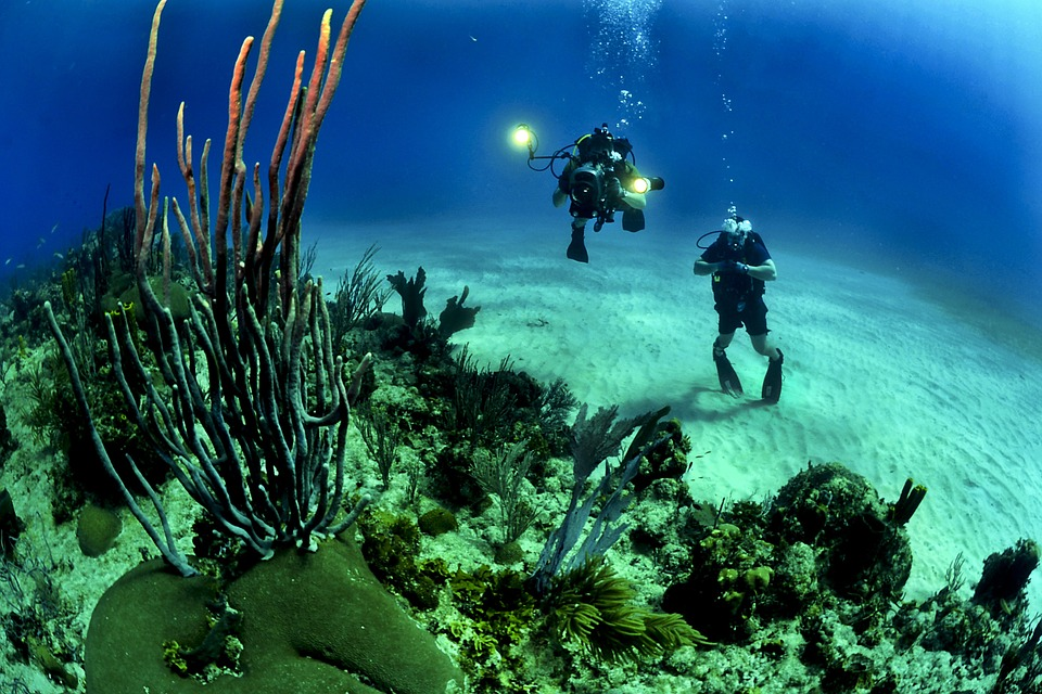 Due subacquei sul fondale marino